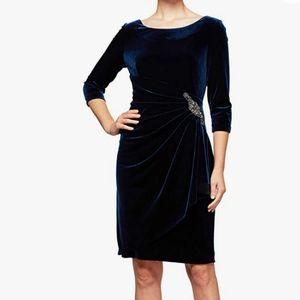 Alex Evenings Velvet Dress, Size 10